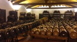 Balsamic Vinegar from Modena